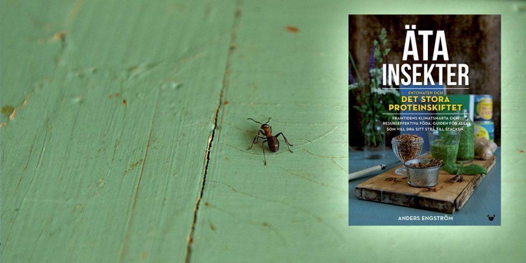 Pressmeddelande: Nu släpps Sveriges första bok om insektsmat – framtidens föda!