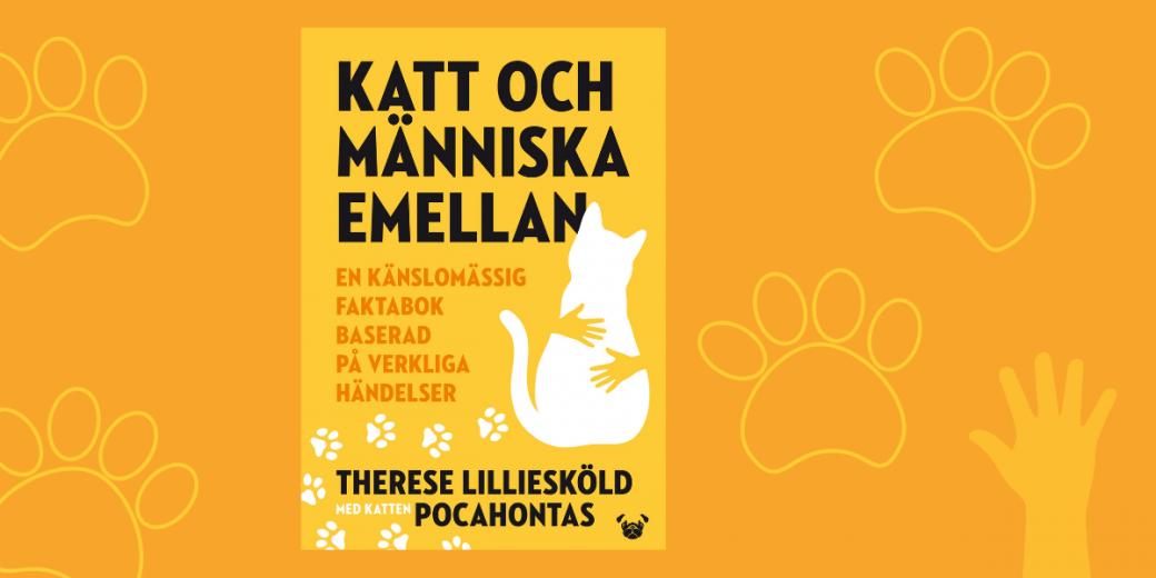 Pressmeddelande: Känslomässig faktabok ger banbrytande insikter om kattens förmågor