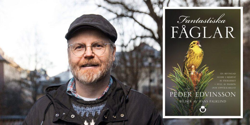 Pressmeddelande: Här är boken som tar det exploderande intresset för svenska fåglar på allvar
